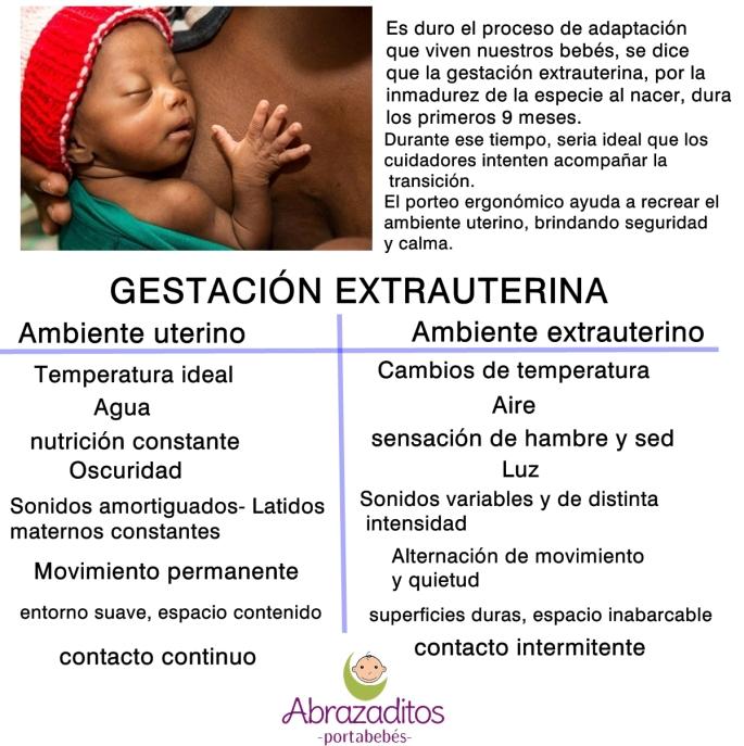 gestacion extrauterina